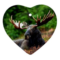 Majestic Moose Heart Ornament (Two Sides)