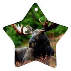 Majestic Moose Star Ornament (Two Sides)
