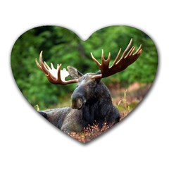 Majestic Moose Mouse Pad (heart)