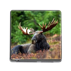 Majestic Moose Memory Card Reader With Storage (square)