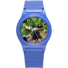 Majestic Moose Plastic Sport Watch (small)