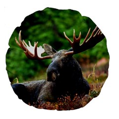 Majestic Moose 18  Premium Round Cushion