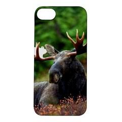 Majestic Moose Apple Iphone 5s Hardshell Case