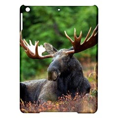 Majestic Moose Apple Ipad Air Hardshell Case
