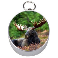 Majestic Moose Silver Compass