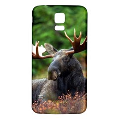 Majestic Moose Samsung Galaxy S5 Back Case (White)