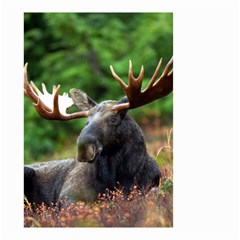 Majestic Moose Small Garden Flag (two Sides)