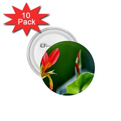 Lily 1 1.75  Button (10 pack)