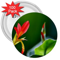 Lily 1 3  Button (100 pack)