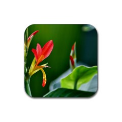 Lily 1 Drink Coaster (Square)