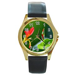 Lily 1 Round Leather Watch (Gold Rim)