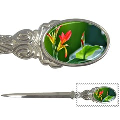 Lily 1 Letter Opener