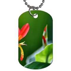Lily 1 Dog Tag (One Sided)