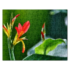 Lily 1 Jigsaw Puzzle (rectangle)
