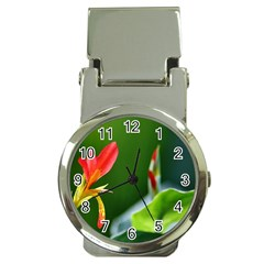 Lily 1 Money Clip with Watch