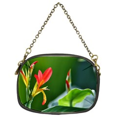 Lily 1 Chain Purse (one Side)