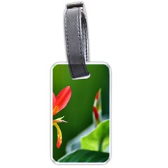 Lily 1 Luggage Tag (one Side)