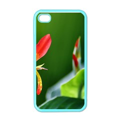 Lily 1 Apple Iphone 4 Case (color)