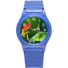 Lily 1 Plastic Sport Watch (small)
