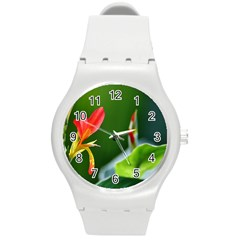 Lily 1 Plastic Sport Watch (medium)