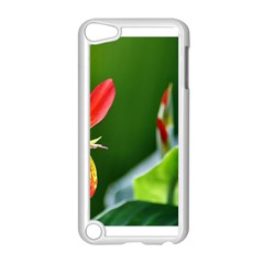 Lily 1 Apple Ipod Touch 5 Case (white)