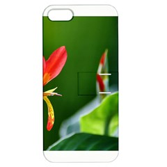 Lily 1 Apple Iphone 5 Hardshell Case With Stand