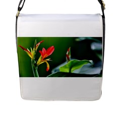 Lily 1 Flap Closure Messenger Bag (Large)