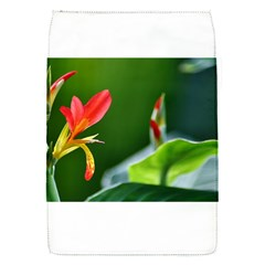 Lily 1 Removable Flap Cover (small)