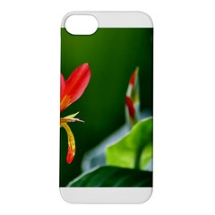 Lily 1 Apple iPhone 5S Hardshell Case