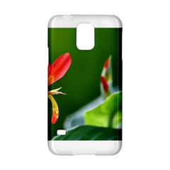 Lily 1 Samsung Galaxy S5 Hardshell Case