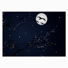 Night Birds And Full Moon Glasses Cloth (large, Two Sided)