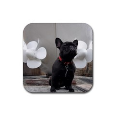 French Bulldog Drink Coasters 4 Pack (Square)