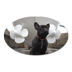 French Bulldog Magnet (oval)