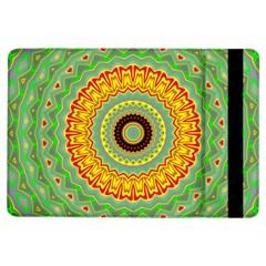 Mandala Apple Ipad Air Flip Case