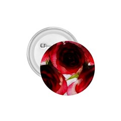 Pink And Red Roses On White 1 75  Button