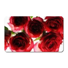 Pink and Red Roses on White Magnet (Rectangular)