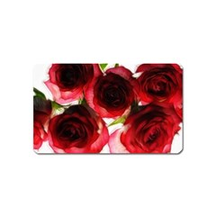 Pink and Red Roses on White Magnet (Name Card)