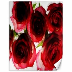 Pink and Red Roses on White Canvas 12  x 16  (Unframed)