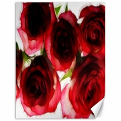 Pink And Red Roses On White Canvas 18  X 24  (unframed)