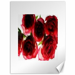Pink And Red Roses On White Canvas 36  X 48  (unframed)