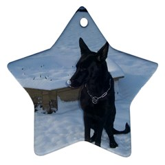 Snowy Gsd Star Ornament (Two Sides)