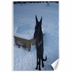 Snowy Gsd Canvas 12  x 18  (Unframed)