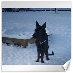 Snowy Gsd Canvas 16  X 16  (unframed)