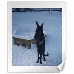 Snowy Gsd Canvas 16  x 20  (Unframed)
