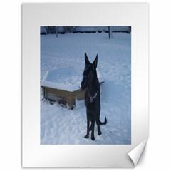 Snowy Gsd Canvas 18  X 24  (unframed)