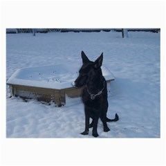 Snowy Gsd Glasses Cloth (Large, Two Sided)