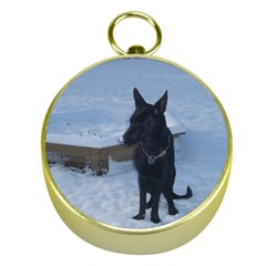Snowy Gsd Gold Compass