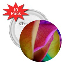 Rainbow Roses 16 2.25  Button (10 pack)