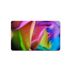 Rainbow Roses 16 Magnet (name Card)