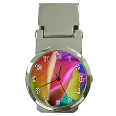 Rainbow Roses 16 Money Clip With Watch